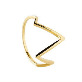 Mounty gold ring